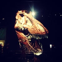 Photo taken at Royal Tyrrell Museum of Paleontology by Paul B. on 12/28/2012