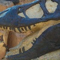 Photo taken at The Boneyard by Michael F. on 10/14/2011