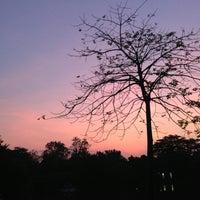 รูปภาพถ่ายที่ Vachirabenjatas Park (Rot Fai Park) โดย Ajomo P. เมื่อ 1/1/2013
