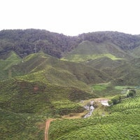 Photo taken at Cameron Bharat Tea Valley by Nor E. on 12/25/2012