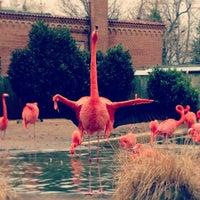 Photo taken at Bird House by Akash J. on 1/31/2013