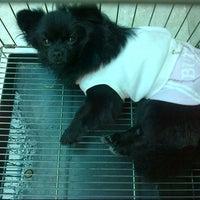 Photo taken at MARS Pet House by Inggrid_LeeHae 안. on 1/8/2013