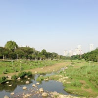 Photo taken at Bishan - Ang Mo Kio Park by Pam S. on 6/22/2013