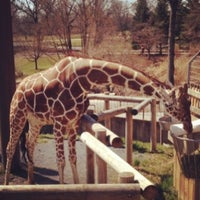 Photo taken at Maryland Zoo in Baltimore by Molly L. on 4/3/2013