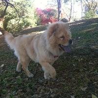 Photo taken at Parque de Las Piedras by Marvin V. on 2/22/2013