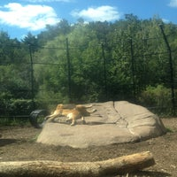 Photo taken at Lake Superior Zoo by Dave S. on 9/2/2013