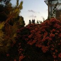 Photo taken at Kumsal Butik Otel by Mustafa K. on 8/18/2013