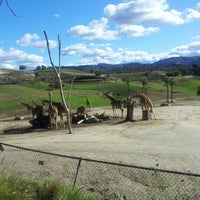 Photo taken at San Diego Zoo Safari Park by Caroline on 12/16/2012