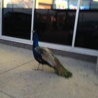 Photo taken at Circle K by Sean M. on 11/30/2012