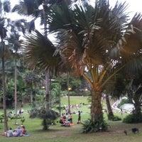 Photo taken at Singapore Botanic Gardens by Hyunji K. on 1/27/2013
