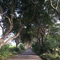 Photo taken at The Dark Hedges by Afieqah A. on 9/20/2016
