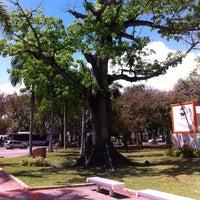 Photo taken at Torre Municipal De San Juan by Joel F. on 4/10/2013