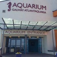 Galway Atlantaquaria