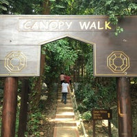 Photo taken at Bukit Nanas Forest Reserve by Yuffie on 8/28/2016