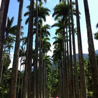 Photo taken at Jardim Botânico do Rio de Janeiro by Edilene S. on 4/6/2013