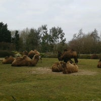 Photo taken at Blackpool Zoo by Naomi W. on 3/2/2013