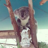 Photo taken at Australia Zoo by Alec D. on 5/28/2013
