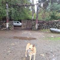 Photo taken at El Estero by Chris S. on 6/17/2012