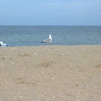 Photo taken at The Inkwell, Martha's Vineyard by Sabrina M. on 8/8/2012