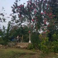 Photo taken at Jardin Maria Clara Lobregat by Cedrick Z. on 9/7/2016