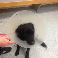 Photo taken at Animal Emergency Service by Alphonse G. on 2/15/2014