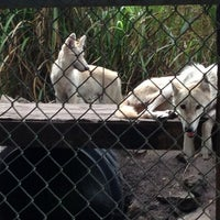 Photo taken at Everglades Outpost by Debra F. on 6/23/2013