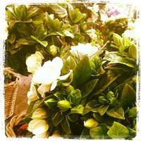 Photo taken at Jardineria Bordas by Armando L. on 5/5/2013