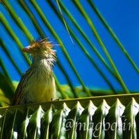 Photo taken at Bahia by  Edson Magoolin™ C. on 11/8/2013