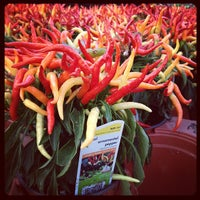 Photo taken at The Home Depot by Ting L. on 11/15/2011