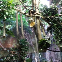 Photo taken at Tropic Zone by Apple G. on 10/12/2013