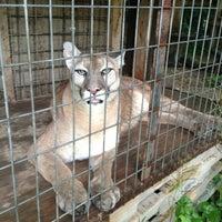 Photo taken at Exotic Feline Rescue Center by Nacho☝ on 7/6/2013