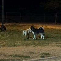 Photo taken at Foothills Dog Park and Dog Run by Balto W. on 9/14/2013