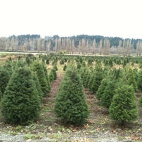 Photo taken at McMurtrey's Red-Wood Christmas Tree Farm by Kristin P. on 12/2/2012