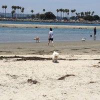 Photo taken at Ocean Beach Dog Beach by Rachel B. on 7/4/2013