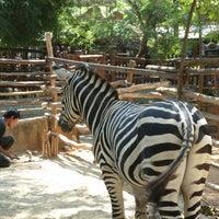 Photo taken at Maharani Zoo & Goa Lamongan by Astri M. on 8/8/2014