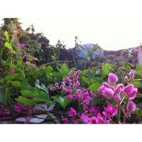 Photo taken at Maguwoharjo by Jihan A. on 7/28/2013