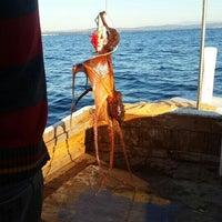 Photo taken at Arka Deniz by Sule🐾 on 11/30/2015