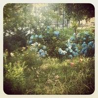 Photo taken at Hattie Carthan Community Garden by Olivier P. on 6/16/2012