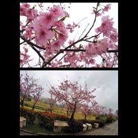 Photo taken at 陽光運動公園 by Penny W. on 2/4/2015