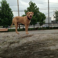 Photo taken at Locust Point Dog Park by Ali R. on 8/7/2013