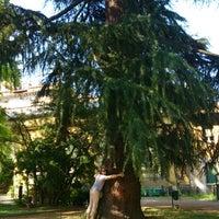 Photo taken at Museo di Storia Naturale, Orto Botanico by Katerina A. on 6/28/2014