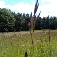 Photo taken at Naturpark Sparbach by SMR on 6/1/2013