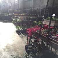 Photo taken at Mercado de flores de Buenos Aires by Marr F. on 9/5/2015