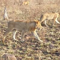 Photo taken at Tintswalo Safari Lodge by Ted C. on 8/12/2013