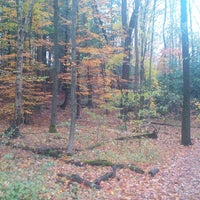 Photo taken at Grey Sauble Conservation Area by Philly M. on 10/28/2013