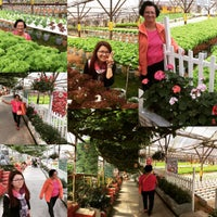 Photo taken at Big Red Strawberry Farm (Agro Tourism Garden) by Joan W. on 7/4/2015