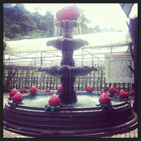 Photo taken at Genting Strawberry Leisure Farm by ✨郑✨ on 6/12/2013
