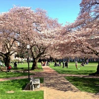 Photo taken at UW Quad by Kate K. on 3/23/2013