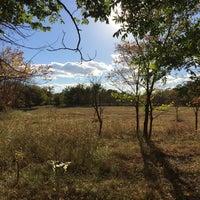 Photo taken at Martin Park Nature Center by Waylon F. on 10/20/2016