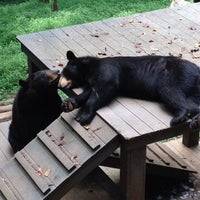 Photo taken at Bear Hollow Wildlife Trail by Emily D. on 7/26/2014